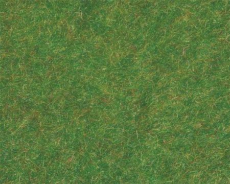 plaque flocage fivre vert fonce 170726 faller syracom modélisme eslettes rouen normandie